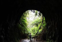 Hikes to go in NSW