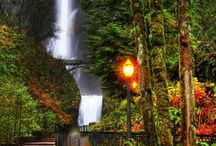 #Waterfalls / by KGW News