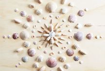 Seashells ideas