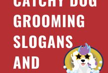 Dog Grooming Slogans and Taglines