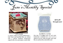 Scentsy<3 / by Leah Schadler