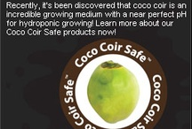 Hydroponic Growing / Coco coir is a 100% environmentally friendly and completely renewable resource. You can use coco-coir with a perfectly clean conscience, because there exists nothing more environmentally friendly.
