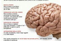 Progetto Crono / Campagna Educativa d'informazione sulla gestione delle patologie tempo dipendenti