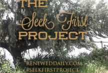 The Seek First Project / A year-long daily project to combat fear and worry with the Word of God. http://reneweddaily.com