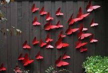 motyliky ma plote