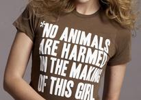 Cruelty free fashion
