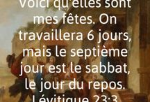 #laBible Lévitique