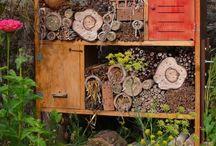 Hotel pre hmyz a divé včielky