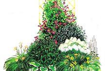 Ogród - nasadzenia, kompozycje
