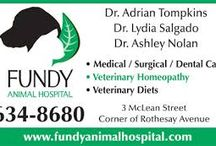 New Brunswick Veterinarians Who Are Qualified to Practice Holistic and Integrative Veterinary / http://www.bestcatanddognutrition.com/roger-biduk/list-of-canadian-holistic-veterinarians/