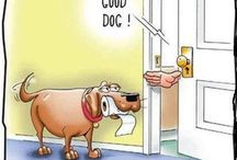 Dog Funnies We Love / Dog humor to brighten anyone's day, if you're a dog lover of course!