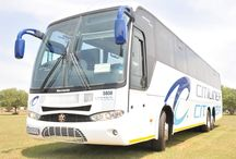 Citiliner Fleet / A collection of our luxury buses