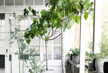 what to do with the loggia / by miri pedersen