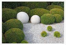 Modern Style Garden