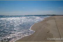 Coast Paradise Pictures / Pictures of the Crystal Coast of North Carolina
