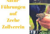 in der Natur unterwegs mit tberg.de / An vielen Orten kann man der Natur begegnen. Und immer hat sie ihren eigenen Reiz – jedesmal zeigt sie ein anderes Gesicht und jedesmal gibt es etwas neues zu entdecken!