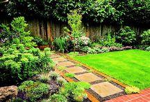 Gardening & Yard  / by Felesha Daniels-Shamber
