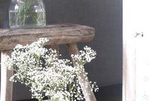 bloemen en planten