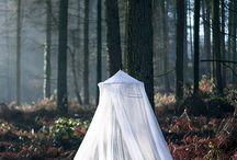 Fairytale shoot / by Kat Forsyth