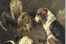 beagles ❤