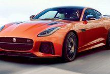 My Jaguar