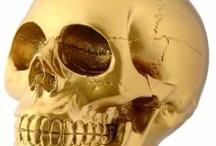skull-land / by Camilla Florez