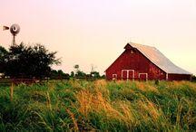 farm scenes / by Val Haddon