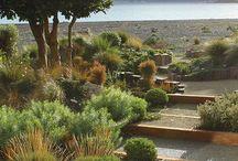 Saltwater Cottage garden / Ideas for Whakatete Bay