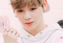 Kang Daniel♡ / W a n n a  O n e