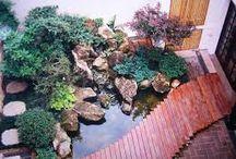 Jardim Japônes