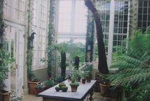 Sandwich St - Conservatory