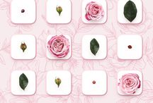 iPhone Wallpapers utilizados