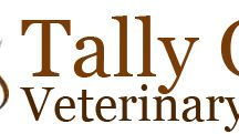 Tally Oaks Veterinary Service Photos of Our Place