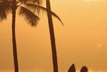 Beach, surf, sun....