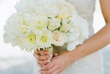 Wedding Ideas / by Ali Hovest