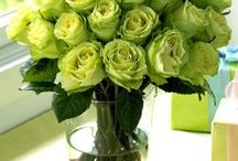 Green bouquet