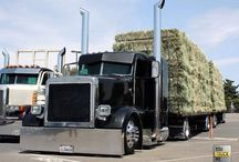 Hauling Hay & Forage / Hauling all types of hay & forage