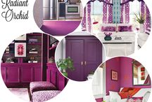 Living in a Radiant Orchid Style- Color of the year -2014 / Journey in Radiant Orchid styles- to home and Fashion wear...