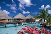 Honeymoons / Ideas for your perfect trip!