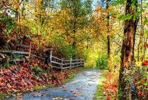 Caminos-Path-Wege