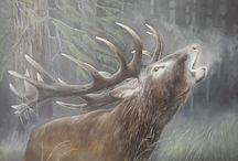 """Divoké zvieratá-maľba-""""-Wildlife painting / O zvieratách žijucich v prírode,zachytenych štetcom na plátne,či sololitovej doske."""