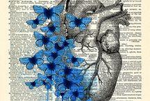 Anatomy arts