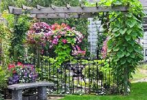 Beautiful Gardens / by Pam Mitchum