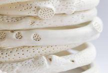 Porcellana coralli