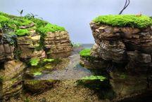 Aquarium/Paludarium/Terrarium/Vivarium