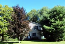 Bow Lake / 31 Drake Hill Road, Strafford, NH  marketed by BHHS Verani Realty, Pamela E. Bailey, 603.294.5700 or direct at 603.770.0369