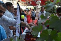 Festival / Les Vins de pays Charentais partenaires des festivals