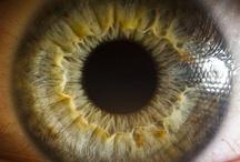 eyes and iridology