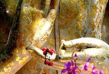 ॐ Meditation ॐ Prayers ॐ Consciousness ॐ
