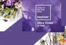 Colour of the year 2018